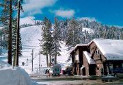 homewood-winter-face