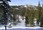 juniper-creek-winter-2