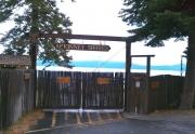 mckinney-shores
