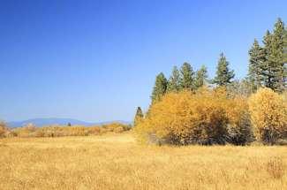 Tahoe Island