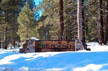 truckee mature personals The tahoe trail trekkers is a local walking and hiking club which is part of a national organization called american volkssport association (avaorg)  truckee, ca .