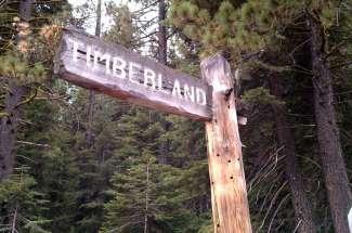 Pineland and Timberland