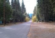 tahoma-street-view